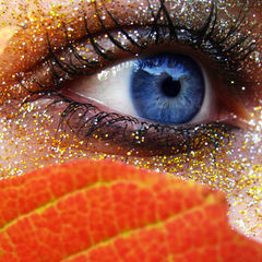 Autumn's eye
